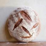 boulangerie française, buenos aires, cocu, le blé, l'épi, le pain quotidien, Dauffouy