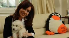 CFK retour à la vie politique novembre 2013.jpg