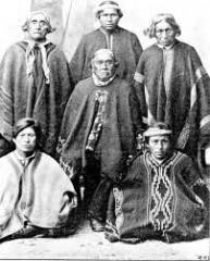 Mapuche 19e.jpg