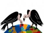 Fonds vautours.jpg