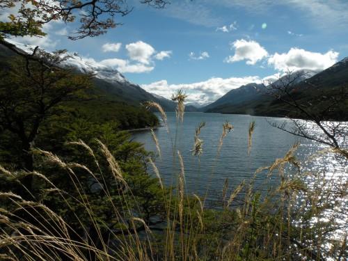 Lago del desierto Patagonie.jpg